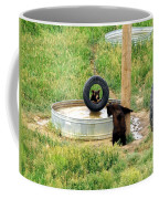 Bears At Play Coffee Mug