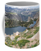 Beartooth Wildflowers Coffee Mug