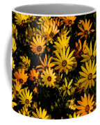 Beautiful African Daisies Coffee Mug