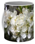 Beautiful Apple Blossoms Coffee Mug
