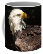 Beautiful Bald Eagle Coffee Mug