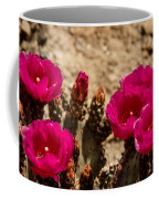 Beautiful Beavertail Cactus Coffee Mug