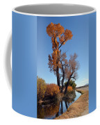 Beautiful Bishop Canal Coffee Mug