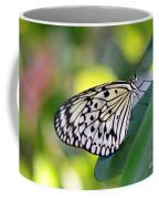 Beautiful Black N White Rice Paper Butterfly Coffee Mug