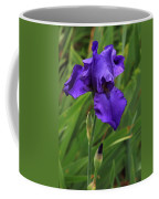 Beautiful Purple Iris Flower Art Coffee Mug