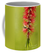 Beautiful Bottle Brush Flower Coffee Mug