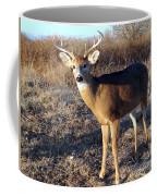 Beautiful Buck Coffee Mug