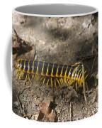 Beautiful Bug Coffee Mug