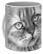 Beautiful Cat Coffee Mug by Olga Shvartsur