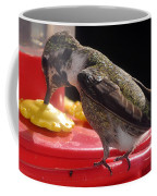 Beautiful Colored Hummingbird Coffee Mug