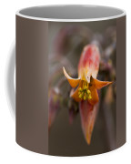 Beautiful Echeveria Bell Coffee Mug