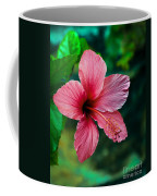 Beautiful Hibiscus Coffee Mug