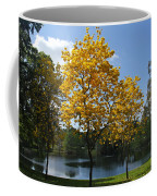 Beautiful Lake Como Coffee Mug