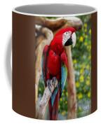 Beautiful Mccaw Coffee Mug