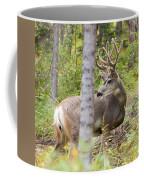 Beautiful Mule Deer Buck With Velvet Antler  Coffee Mug
