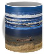 Beautiful Ocean Shores Coffee Mug