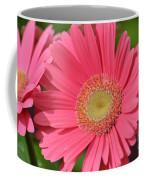 Beautiful Pink Gerber Daisies Coffee Mug