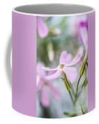 Beautiful Pink Spring Flowers Coffee Mug