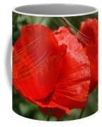 Beautiful Poppies 10 Coffee Mug