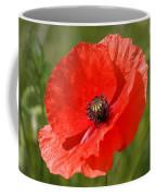 Beautiful Poppies 7 Coffee Mug