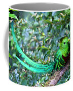 Beautiful Quetzal 3 Coffee Mug
