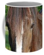 Beautiful Shire Coffee Mug