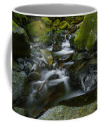 Beautiful Stream Coffee Mug
