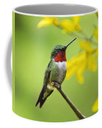 Beautiful Summer Hummer Coffee Mug