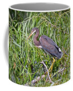 Beautiful Tricolored Heron Coffee Mug