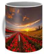Beautiful Tulip Field Sunset Coffee Mug