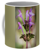 Beautiful Weed Coffee Mug