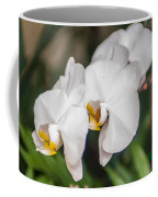 Beautiful White Orchids Flower Bloom Coffee Mug