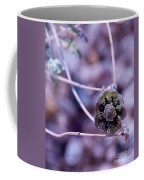 Beauty After Bloom Coffee Mug