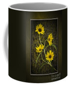 Beauty And Bark Coffee Mug
