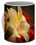 Beauty Beheld Coffee Mug