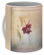 Beauty Fades Softly Framed Coffee Mug