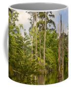 Beauty In A Swamp Coffee Mug