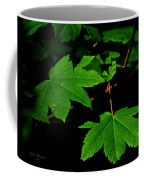 Beauty In Nature Coffee Mug