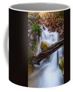 Stream At Sundown Coffee Mug by Parker Cunningham