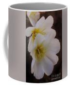 Beauty In The Canyon 2 Coffee Mug