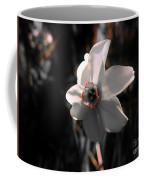Beauty In The Woods Coffee Mug