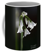 Beauty Of The Snowdrops Coffee Mug