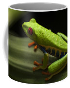 Beauty Of Tree Frogs Costa Rica 2 Coffee Mug