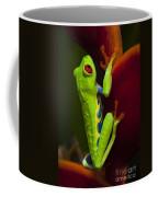 Beauty Of Tree Frogs Costa Rica 9 Coffee Mug