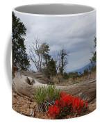 Beauty On 25 Mesa Panoramic Coffee Mug