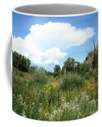 Beaver Creek Valley In Colorado Coffee Mug