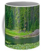 Beaver Dam In Heron Pond In Grand Teton National Park-wyoming Coffee Mug