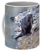 Beaver Sharpens Stick Coffee Mug