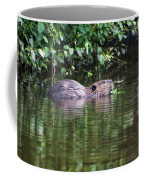 beaver swims in NC lake Coffee Mug