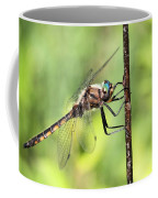 Beaverpond Baskettail Dragonfly Coffee Mug